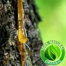 Frankincense Hydrosol Organic (CANADA)
