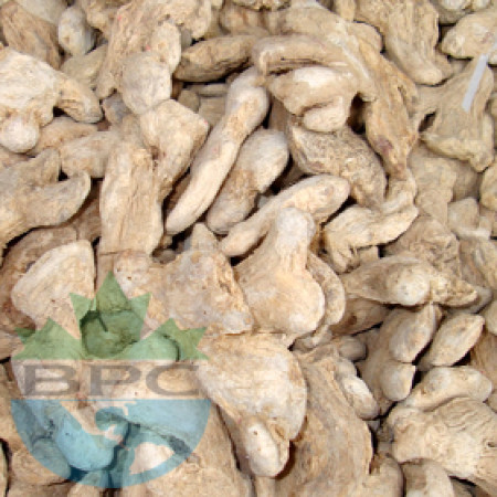 GINGER ROOT WHOLE