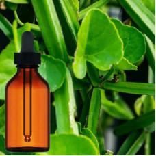 Hadjod Herbal Tincture