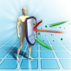 Immunity Strength Synergy Blend