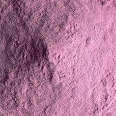 Blue Berry Fruit Powder