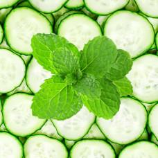 Mint Melon Fragrance Oil