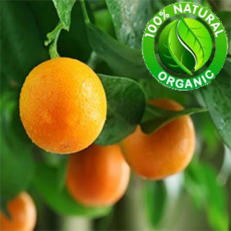 Orange Sweet Essential Oil Organic