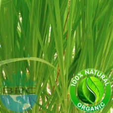 Lemongrass Essential Oil Organic