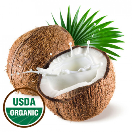 Coconut Fractionated Oil MCT Organic