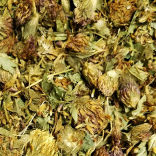 RED CLOVER TOPS WHOLE