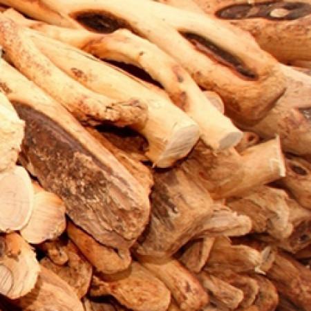 Sandalwood Natural Blend Oil