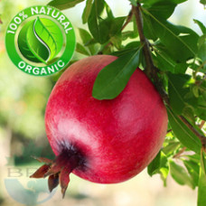 Pomegranate Seed Oil Virgin Organic (INDIA)