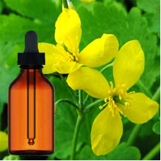 Celandine Herbal Tincture