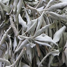 SAGE LEAVES WHOLE