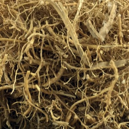 CUSCUS GRASS (KHUSS) SEE VETIVER ROOT