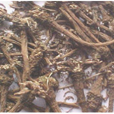 PELLITORY ROOT