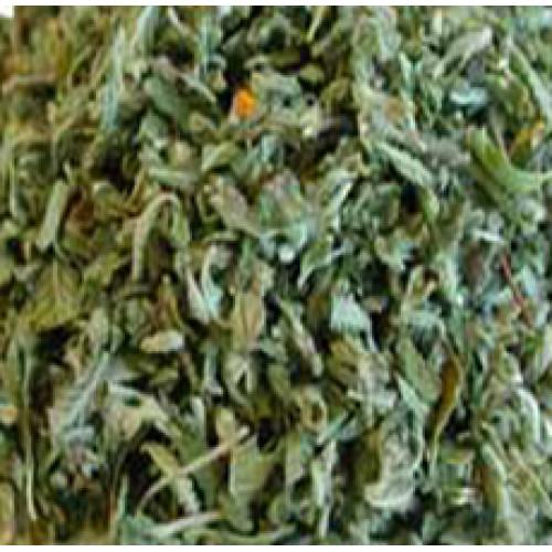 High Quality Lobelia Herb Canada Usa