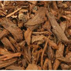 PYGEUM BARK