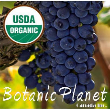 Grape Seed Oil ORGANIC