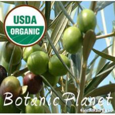 Olive Oil ORGANIC (Spain)